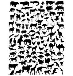 Various types of animal silhouettes vector image