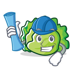 Architect lettuce character cartoon style vector