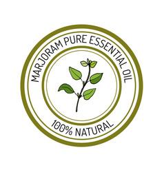 Marjoram essential oil label aromatic plant vector