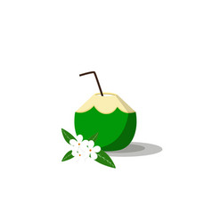 Summer drink green coconut on white background vector