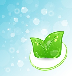 Green Leaves Ecologic Emblem vector image