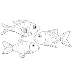 Fish outline drawings vector