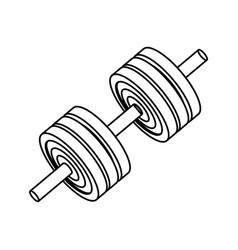 Gym and fitness equipment vector