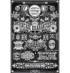 Vintage Hand Drawn Graphic Banners and Labels on vector image