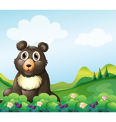 A big bear sitting in the garden vector