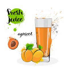 Apricot juice fresh hand drawn watercolor fruits vector