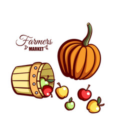 Farmers market apples pumpkin vector