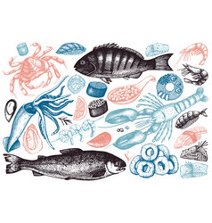 Hand drawn seafood set vector
