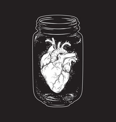 Human heart in glass jar isolated print design vector