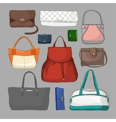 Collection of different women bags vector image