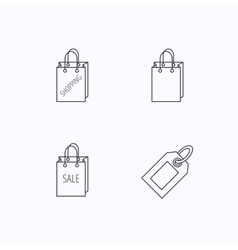 Shopping sale bag and coupon icons vector image