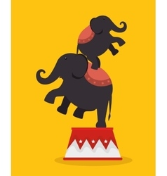 Elephants acrobats festival funfair vector