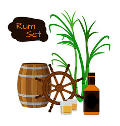 Rum barrel bottle sugar cane helm shots in flat vector