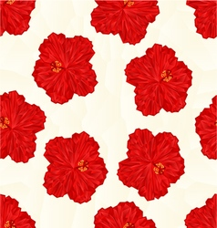 Seamless texture red hibiscus flower chinese rose vector image vector image