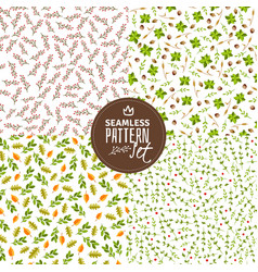 twigs and leaves seamless patterns vector image