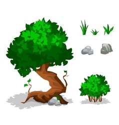 Green plants trees bushes grass and stone vector