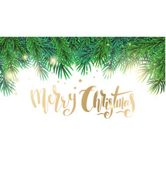 christmas card with text and fir tree branches vector image