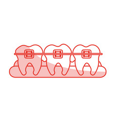 red shading silhouette cartoon set gum with tooth vector image