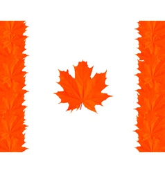 symbols of Canada vector image