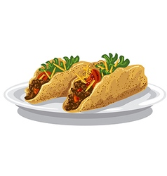 tacos on plate vector image vector image