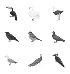 Bird set icons in monochrome style big collection vector
