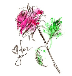 Sketch and watercolor rose vector image