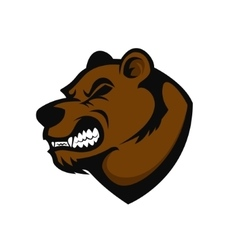 Bear head mascot vector