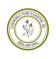Chamomile essential oil label aromatic plant vector