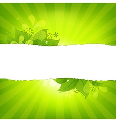 Natural Background With Leaves And Sunburst vector image