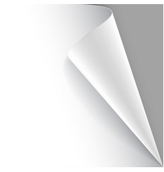 Paper poster with a wrapped up corner vector