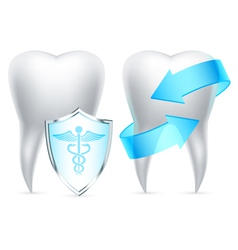 Teeth protection vector