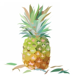 Watercolor pineapple isolated vector