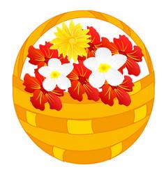 flower in basket vector image