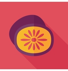 Kiwi flat icon with long shadow vector