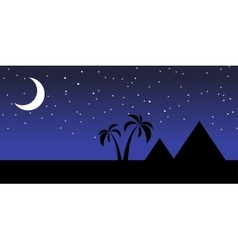 Egypt at night vector