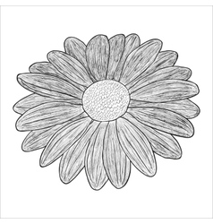 Black and white of a flower vector