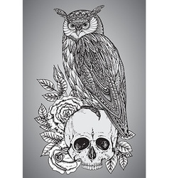 With hand drawn ornate owl on human skull vector