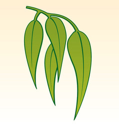Gum leaves vector