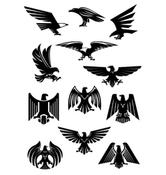 Eagle or falcon aquila or hawk heraldic badge vector