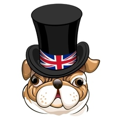 English bulldog emblem vector