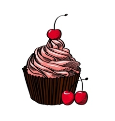 Cupcake With Cherry Isolated On White Background vector image vector image