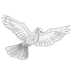 Dove coloring for adults vector