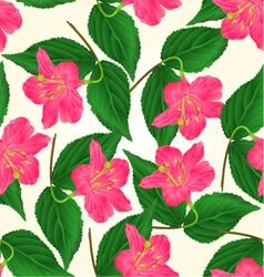 Seamless texture Pink flower decorative shrub vector image