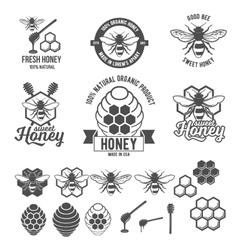 Vintage frame with Honey label set vector image vector image