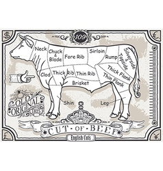 Vintage Pastel Page of English Cut of Beef vector image