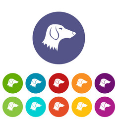 dachshund dog set icons vector image