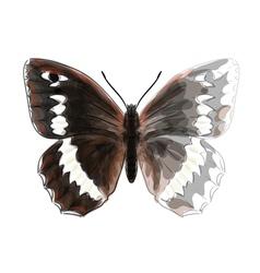 Butterfly Brintesia Circe vector image vector image