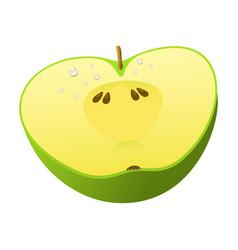 green apple fruit slice realistic 3d healthy vector image vector image