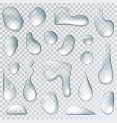 raindrop or water drops isolated on transparent vector image