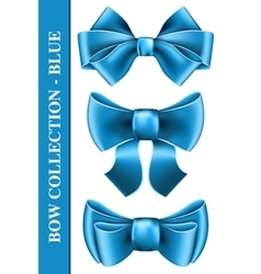 Big bow collection vector